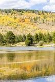 秋天在洛矶山国家公园 免版税库存图片