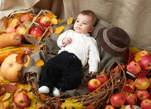 秋天在黄色秋天叶子、苹果、南瓜和装饰的小男孩谎言在纺织品 库存照片