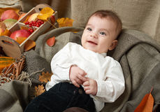 秋天在黄色秋天叶子、苹果、南瓜和装饰的小男孩谎言在纺织品 库存图片