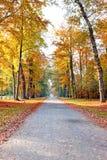 秋天在从荷兰的乡下 免版税图库摄影