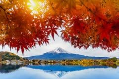 秋天在Kawaguchiko湖,日本的季节和富士山 免版税库存照片