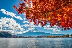 秋天在Kawaguchiko湖,日本的季节和富士山 免版税库存图片