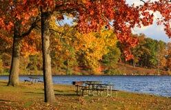 秋天在Kensington公园 免版税库存照片