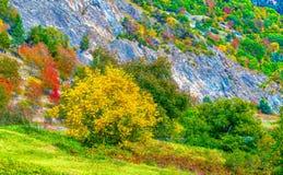 秋天在Le Chabe瑞士 库存照片