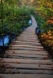秋天在Plitvice 库存图片