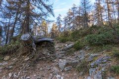 秋天在tha阿尔卑斯 库存图片