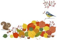 秋天场面橙色叶子、橡子和动物 免版税库存图片
