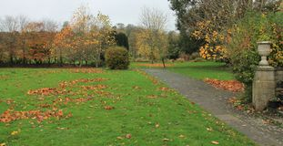 秋天场面Cumbria英国 免版税图库摄影