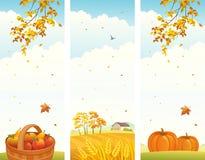 秋天垂直横幅 库存图片