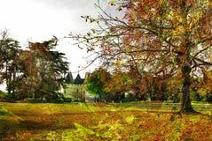 秋天城堡 免版税图库摄影