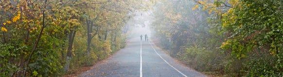 秋天城市公园,跑步和自行车道路 库存图片