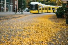 秋天城市场面 在黄色叶子的选择聚焦在路 电车在背景中被弄脏 库存图片