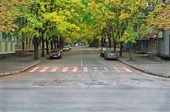秋天城市街道  图库摄影