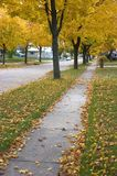 秋天城市 库存照片