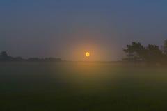 秋天夜森林发亮与在云彩的明亮的月亮 库存图片