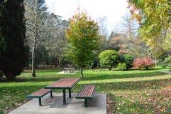 秋天天在公园野餐区 免版税库存图片