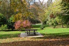 秋天天在公园野餐森林区域 免版税库存图片