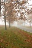 秋天天气 库存图片