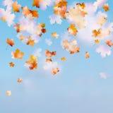 秋天天空叶子。EPS 10 免版税库存图片
