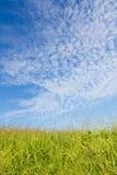 秋天天空和草 库存图片