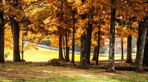 秋天太阳光芒 库存图片