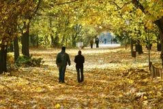秋天夫妇公园走 库存图片