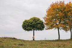 秋天女孩少许公园 在结构树下 免版税库存图片