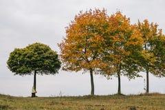 秋天女孩少许公园 在结构树下 库存照片