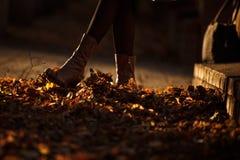 秋天妇女` s起动踢下落的干燥叶子 免版税库存照片