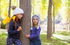 秋天姐妹使用在森林树干的孩子女孩室外 免版税库存照片