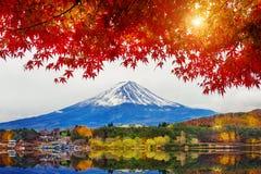 秋天季节和山在Kawaguchiko湖,日本的富士 图库摄影