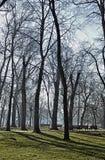 秋天季节在城市公园 库存照片
