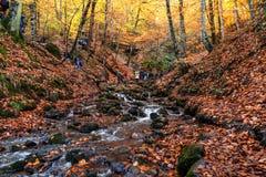秋天季节在河 库存图片