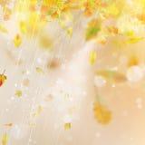 秋天季节弄脏了叶子 EPS 10向量 免版税库存图片