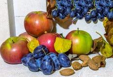 秋天季节性果子收获 图库摄影