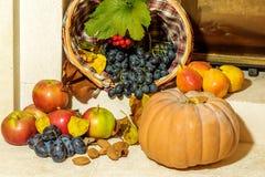 秋天季节性果子收获 库存照片