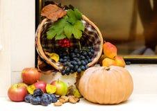秋天季节性果子收获 免版税图库摄影