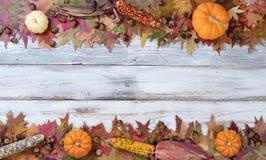 秋天季节性装饰顶面和底下边界  免版税库存照片