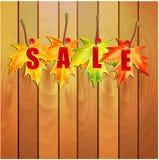 秋天季节性销售的例证 免版税库存照片
