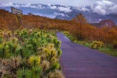 秋天季节留下在昭和shinzan vulcano hokka上的颜色变化 库存照片