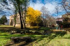 秋天季节的北海道大学 图库摄影