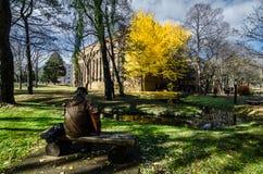 秋天季节的北海道大学 免版税库存照片