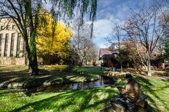 秋天季节的北海道大学 库存照片