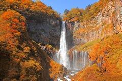 秋天季节的华严瀑布 免版税库存照片