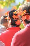秋天季节的庆祝与叶子的在头发 库存图片