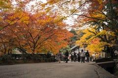 秋天季节的Colos在京都日本 免版税库存图片