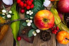 秋天安排用苹果,南瓜沙子白色丝绸花, 免版税库存图片