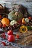秋天安排用装饰南瓜,向日葵,苹果 免版税库存图片