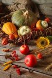 秋天安排用装饰南瓜,向日葵,苹果 图库摄影