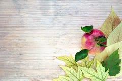 秋天安排-角落装饰用在黄色秋叶的一个成熟红色苹果 木背景 安置文本 库存照片